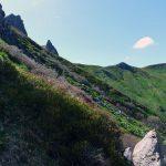 #2 Séjour en Auvergne : Puy de Sancy & lac Pavin sejour-en-auvergne-puy-de-sancy-monts-dore-lac-pavin-campagne-auvergnate-blog-mcommemlle-13