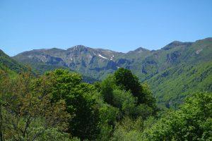 #2 Séjour en Auvergne : Puy de Sancy & lac Pavin sejour-en-auvergne-puy-de-sancy-monts-dore-lac-pavin-campagne-auvergnate-blog-mcommemlle-7