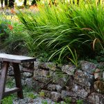 #2 Séjour en Finistère : Kerdreïn, Ménez-Hom et Trefeuntec