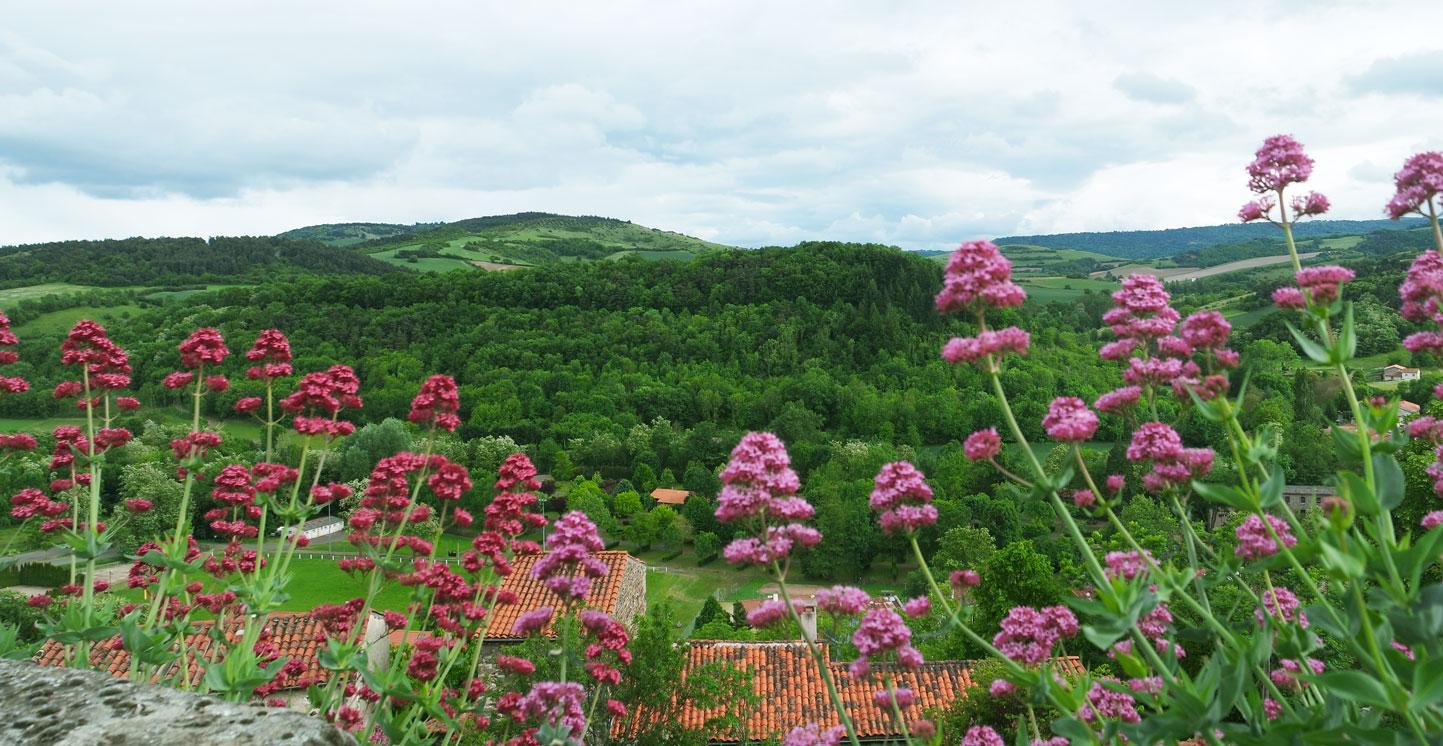 #1 Séjour en Auvergne : Montaigut-le-Blanc & Saint-Nectaire gites-pailhas-gite-la-voute-sejour-auvergne-montaigut-le-blanc-blog-mcommemlle
